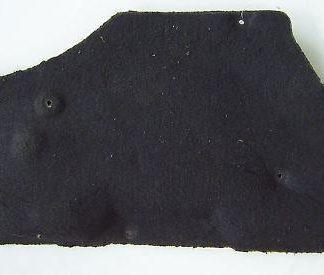 Citroen Xantia X1 Dämmung Handschuhfach