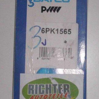 Keilrippenriemen Dayco 6PK1565 | NT342