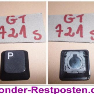 Medion Akoya MD 96380 MIM2280 Teile Taste P