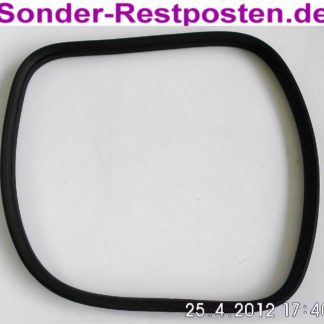 Opel Sintra 3,0 Fenstergummi Dichtung Hinten