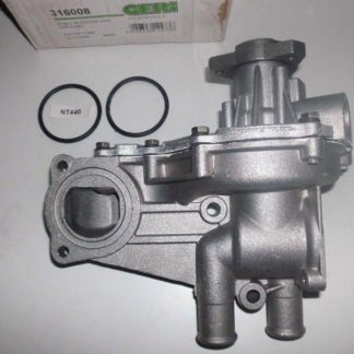 Wasserpumpe Geri 316008 VW | NT440