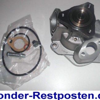 Wasserpumpe Saleri PA573 VW | NT435